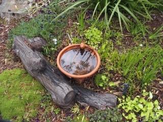 colsey birdbath