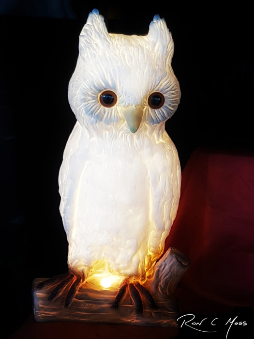 MOSS_Owl-web