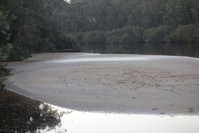 tidal-mudflats-for-web
