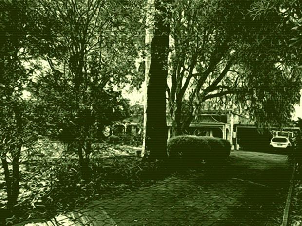 dawn-driveway-2.-for-web-jpg